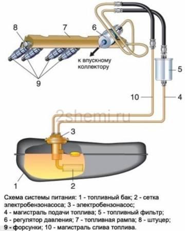 nasos-vaz-6.jpg