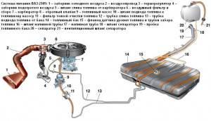 sispit2109-fit-300x172.JPG