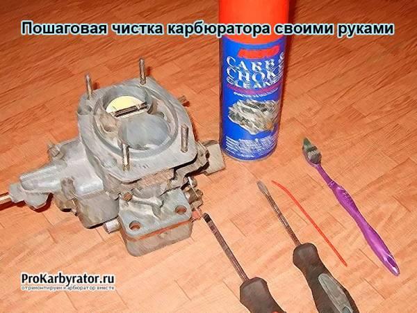Poshagovaya-chistka-karbyuratora-svoimi-rukami.jpg
