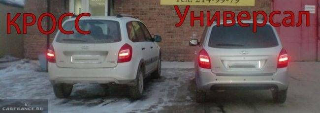 klirens-kalina-kross-i-obichnaya-kalina-650x230.jpg